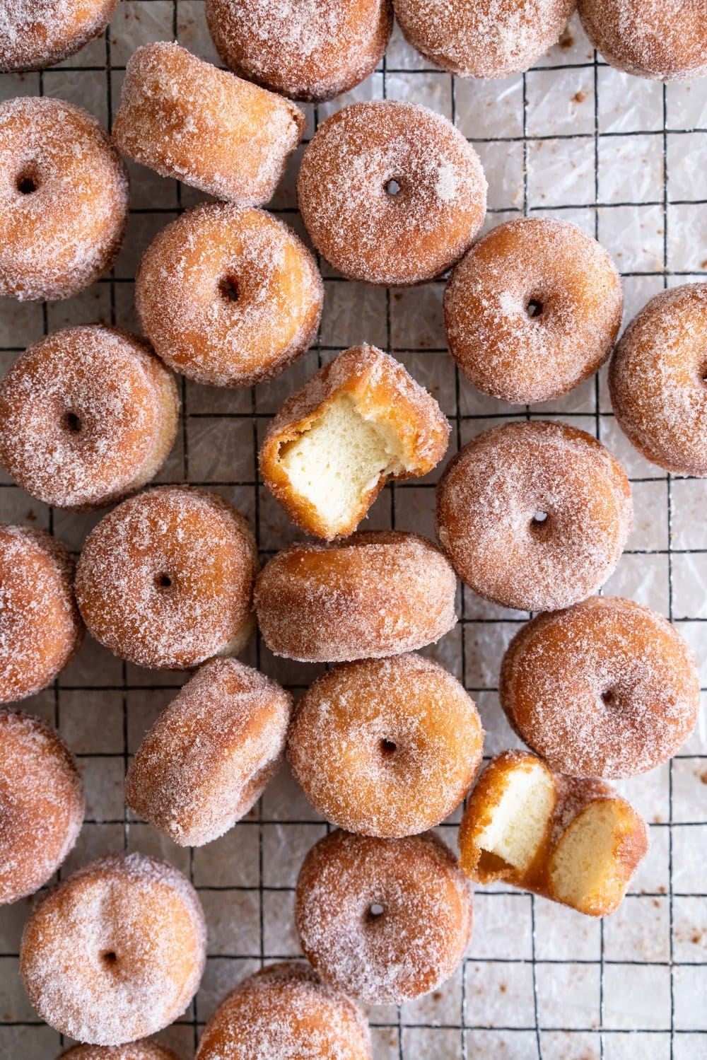 Fluffy miniature brioche doughnuts - an easy brioche dough is given an overnight rise, then rolled out and cut into tiny, perfect doughnuts, which are fried until golden brown, then rolled in cinnamon sugar. The perfect mouthful of fluffy doughnut, and sweet, spicy sugar. #briochedoughnut #cinnamonsugar #yeastdoughnut