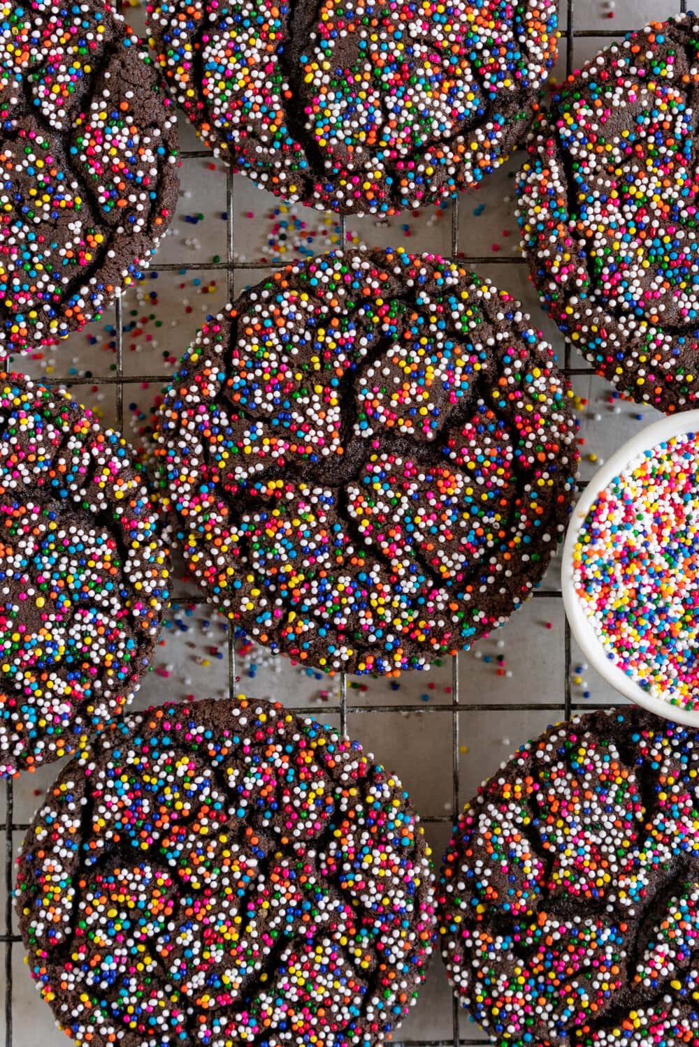 Chocolate Sprinkle Sugar Cookies. These chocolate sugar cookies are thin and chewy, and rolled in sprinkles instead of the traditional sugar, which gives them a perfect crunch and super cute rainbow sprinkle finish. These are similar to crinkle cookies, but the sprinkle coating makes them extra cute, and they are so easy to make!