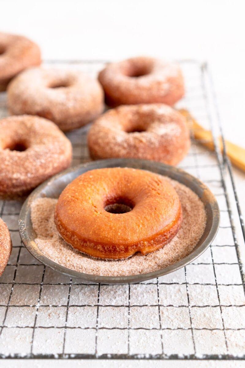 fried doughnut in cinnamon sugar